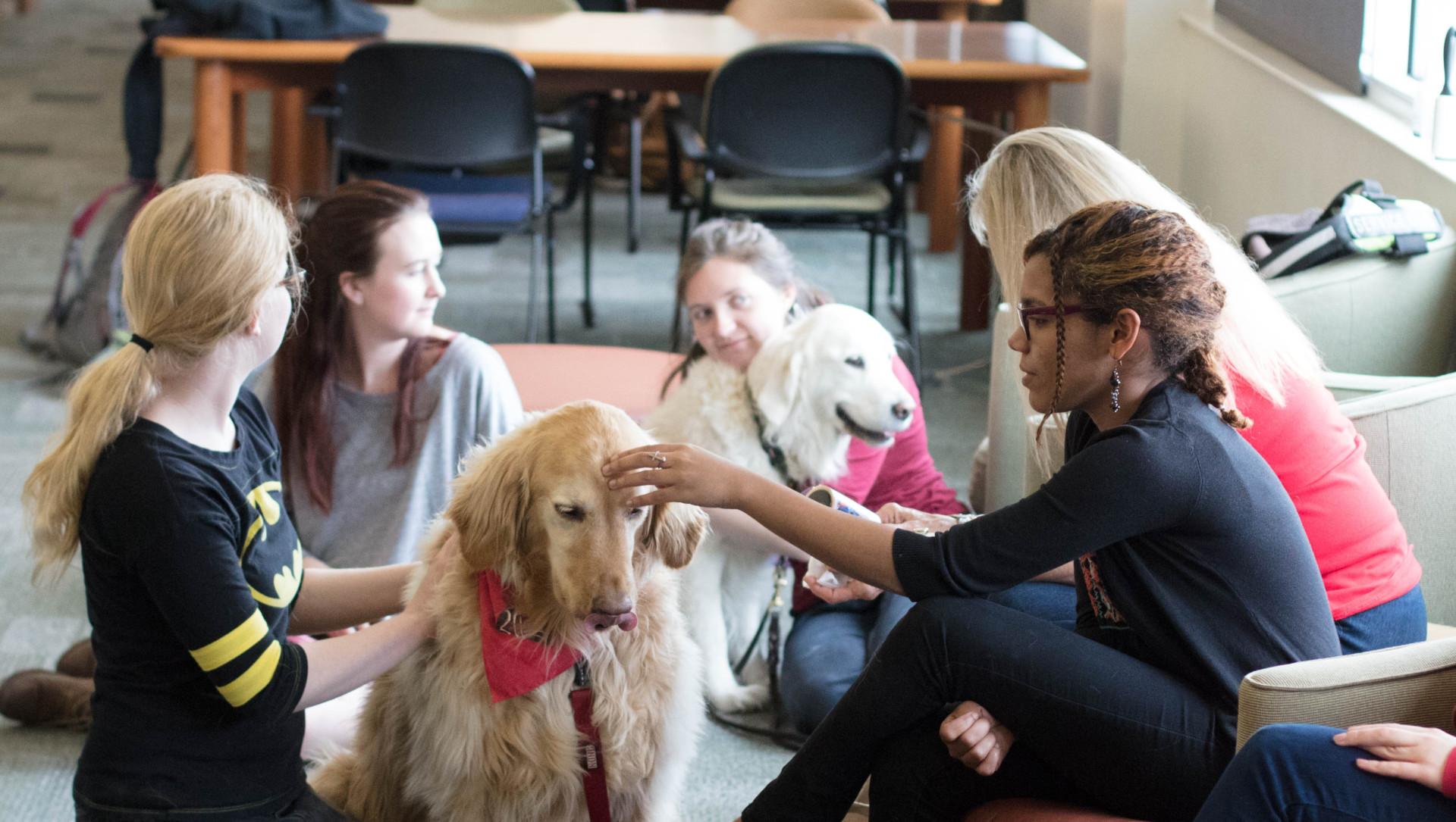 Utah State Therapy Dogs