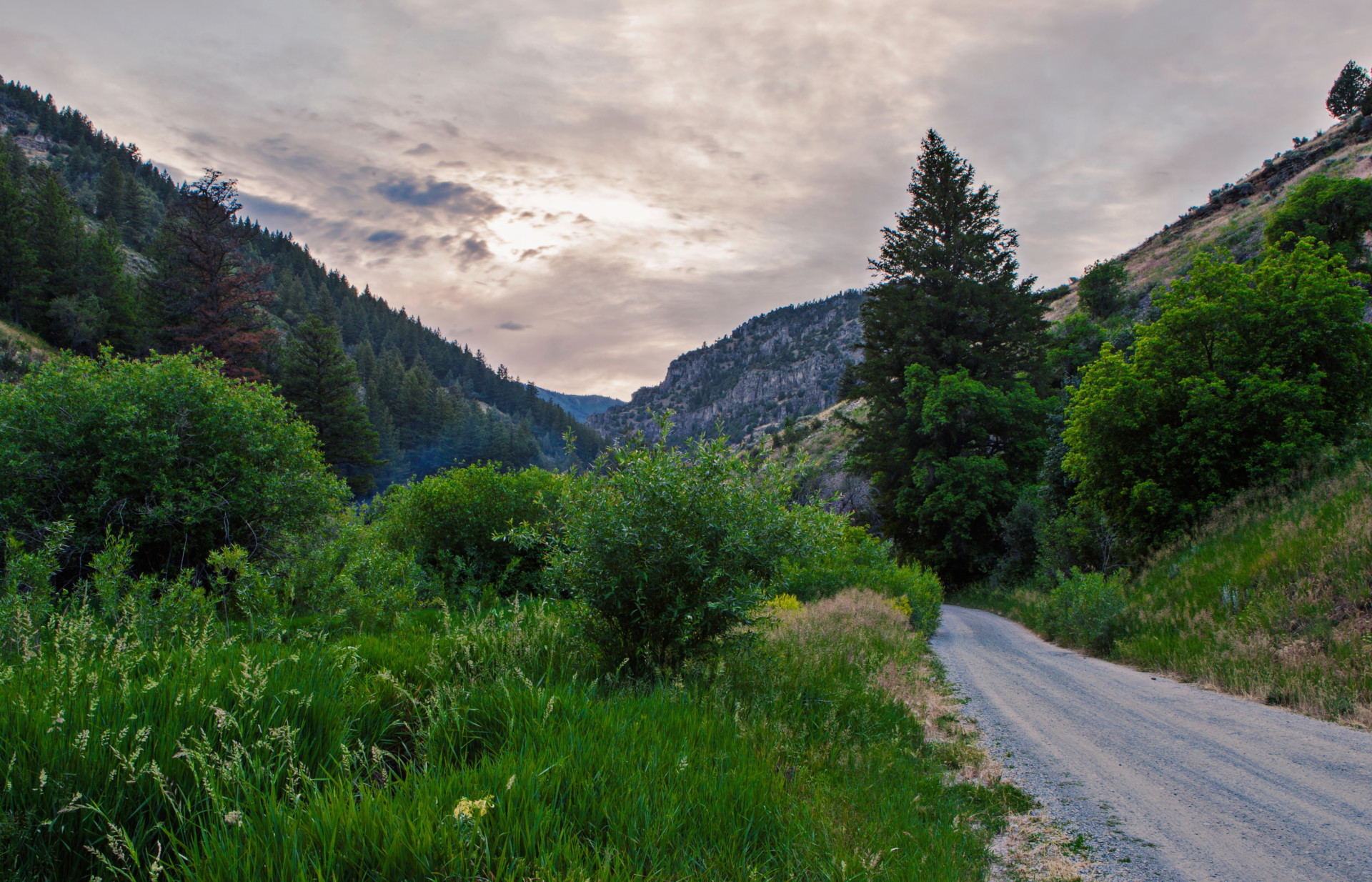Logan Canyon - Utah State University